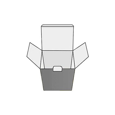 Reverse Tuck End With Lock Design